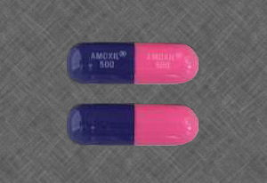 [Picture of wonder drug amoxillin]